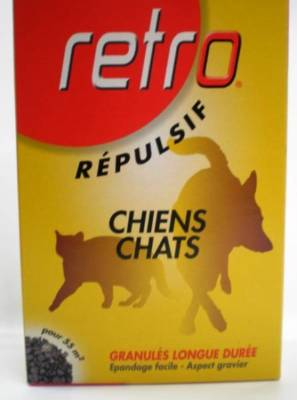 Recto chien chat